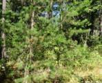 L209 Timber Tr - Photo 20