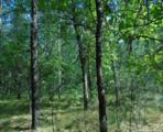 L210 Timber Tr - Photo 16