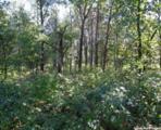 L210 Timber Tr - Photo 18