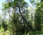 L210 Timber Tr - Photo 8