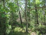 2 Ac Wilderness Tr - Photo 8
