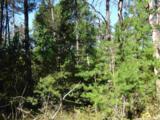 L212 Timber Tr - Photo 6