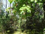 L212 Timber Tr - Photo 8
