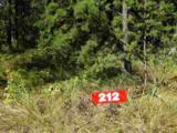 L212 Timber Tr - Photo 9