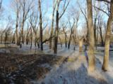 N4699 St Lawrence Bluff Rd - Photo 20
