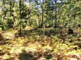 10138 Point O Pines Rd - Photo 2