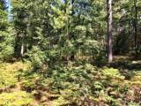 10138 Point O Pines Rd - Photo 4