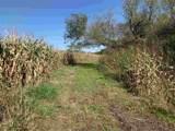 60.41 Acres La Rue Rd - Photo 4