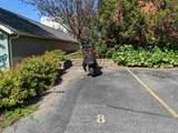 5335 Garden View Ct - Photo 2