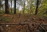 L2 White Pine Way - Photo 11