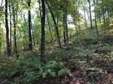 7773 Knight Hollow Rd - Photo 36