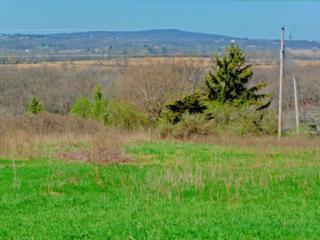 L2 Mound View Rd, Middleton, WI 53593 (#1800420) :: HomeTeam4u