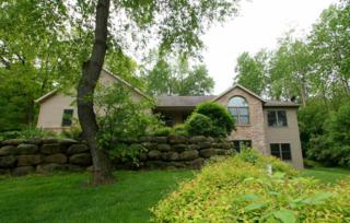 3367 Field View Ln, Cottage Grove, WI 53527 (#1804568) :: HomeTeam4u
