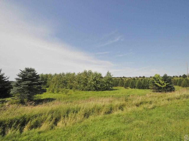 10.56 Ac County Road VV, Bristol, WI 53590 (#1726226) :: Nicole Charles & Associates, Inc.