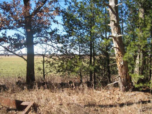 Lot 1 1st Dr (Pv), Coloma, WI 54930 (#1739092) :: Nicole Charles & Associates, Inc.