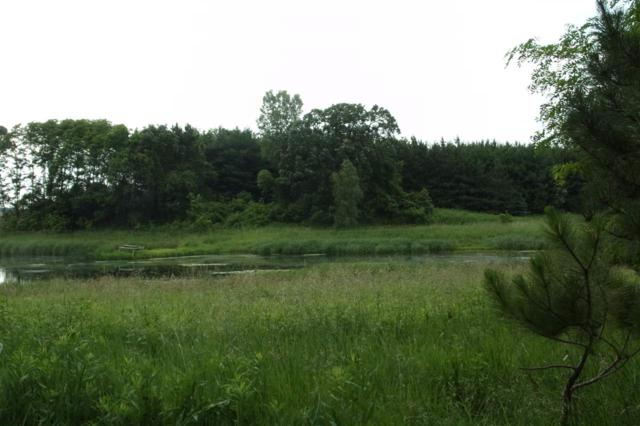 35 Ac County Road Cm, Marcellon, WI 53954 (#1750893) :: Nicole Charles & Associates, Inc.