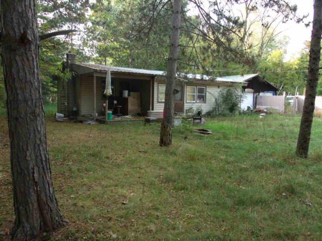 N2869 Marquette Dr, Packwaukee, WI 53949 (#1759728) :: HomeTeam4u