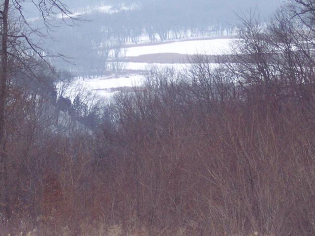 41 Grand View Dr, Freeman, WI 54624 (#1762047) :: HomeTeam4u