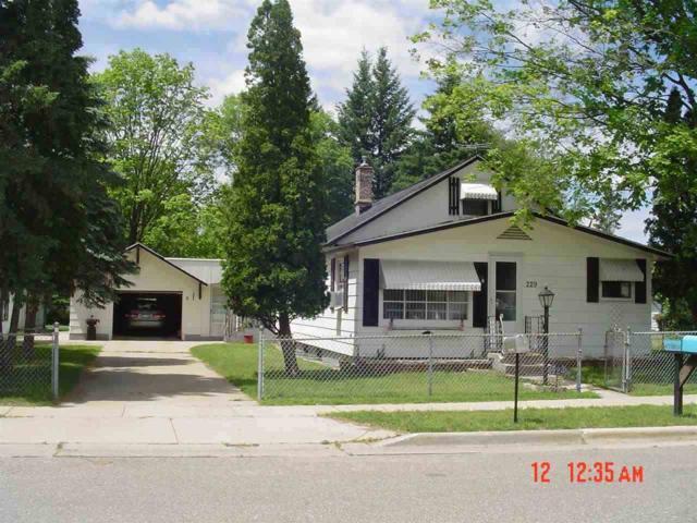 229 N Pine St, Adams, WI 53910 (#1772835) :: Nicole Charles & Associates, Inc.