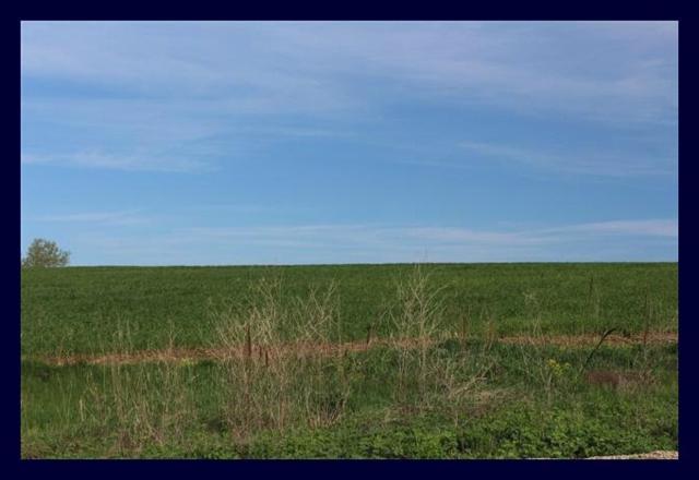 L75 Bridle Path, Lake Mills, WI 53551 (#1790381) :: Nicole Charles & Associates, Inc.