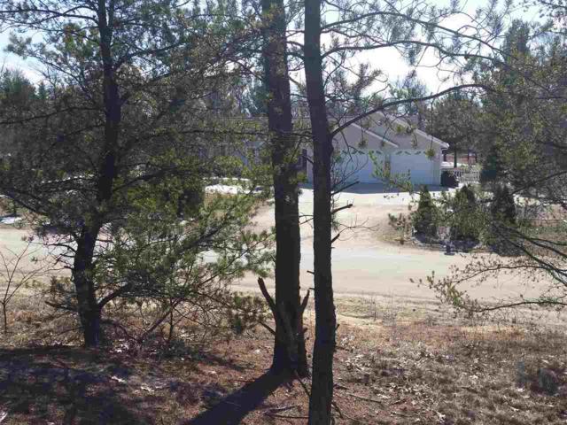 L1 Pine Prairie Ln, Buena Vista, WI 53556 (#1795394) :: Nicole Charles & Associates, Inc.