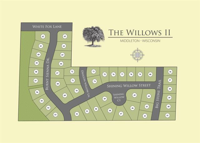 514 Dragon Willow Ln, Madison, WI 53562 (#1797255) :: Nicole Charles & Associates, Inc.