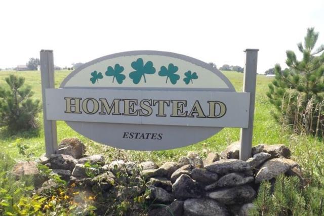 L66 Bud Ln, Albany, WI 53502 (#1798223) :: HomeTeam4u