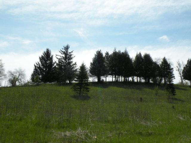 217 Stonehill Ct, Ripon, WI 54971 (#1802230) :: HomeTeam4u
