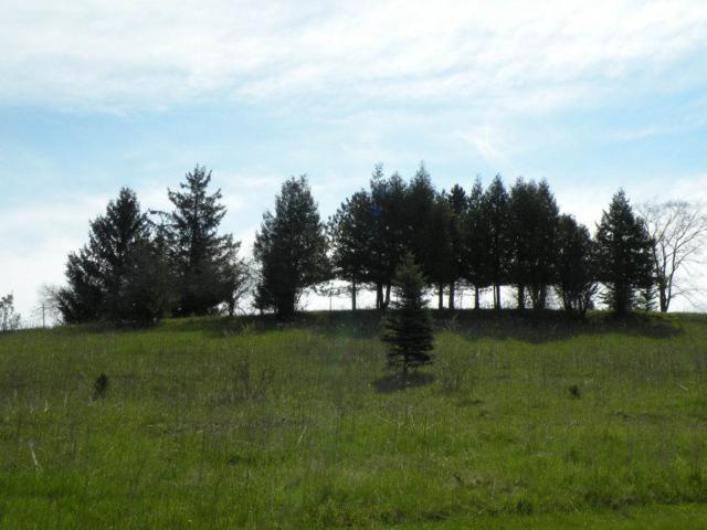 249 Stone Hill Ct, Ripon, WI 54971 (#1802238) :: HomeTeam4u