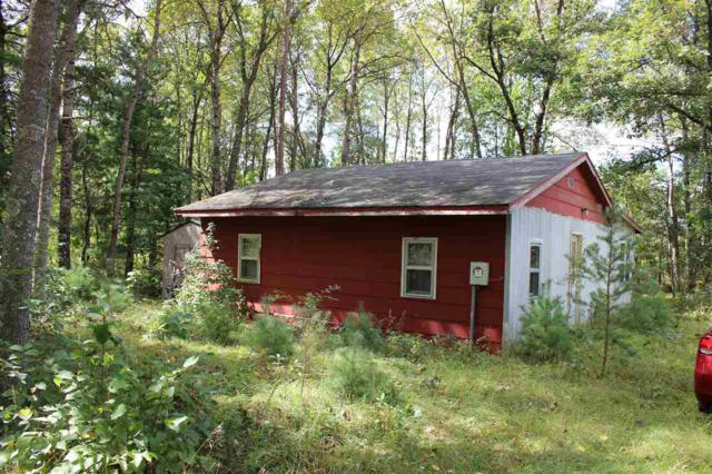 1731 13th Ln, Preston, WI 53934 (#1814873) :: Nicole Charles & Associates, Inc.