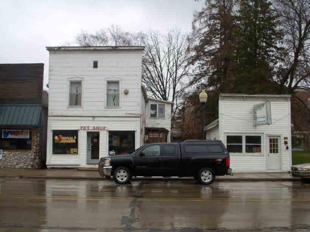308 Main St., Friendship, WI 53934 (#1818371) :: Nicole Charles & Associates, Inc.