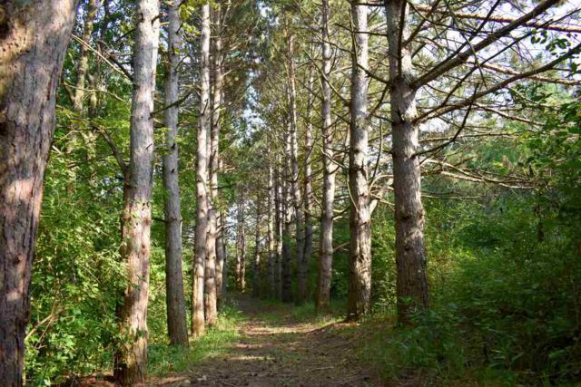 L24 Ox Trail Way, Middleton, WI 53593 (#1821397) :: Nicole Charles & Associates, Inc.