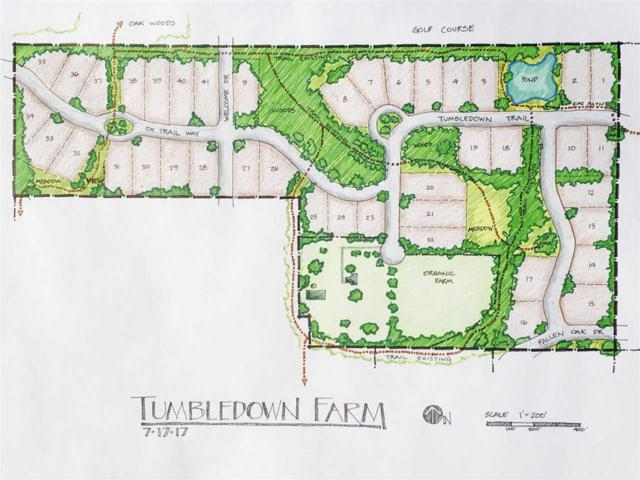 L25 Ox Trail Way, Middleton, WI 53593 (#1821400) :: Nicole Charles & Associates, Inc.