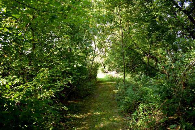 L27 Ox Trail Way, Middleton, WI 53593 (#1821750) :: Nicole Charles & Associates, Inc.