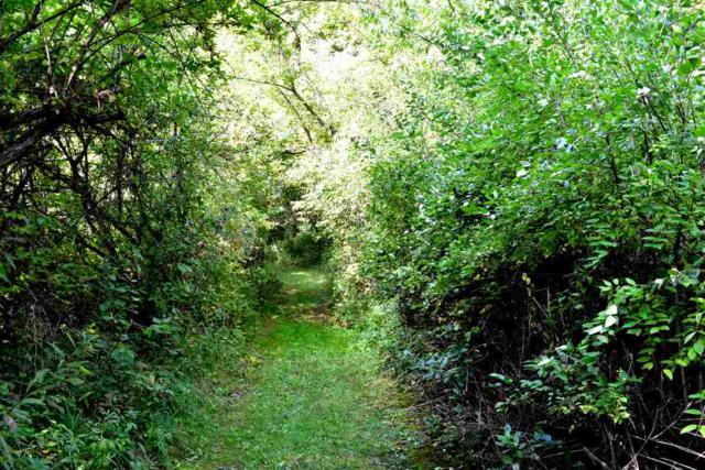 L28 Ox Trail Way, Middleton, WI 53593 (#1821751) :: Nicole Charles & Associates, Inc.