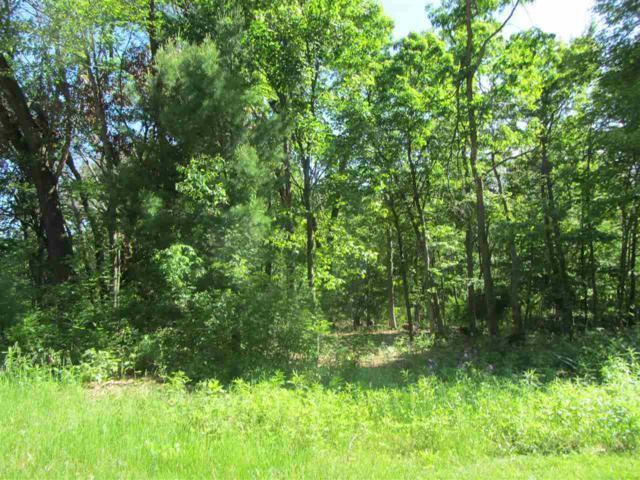 259 Dogwood Ln, Lake Delton, WI 53965 (#1826160) :: Nicole Charles & Associates, Inc.