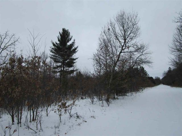 52.55 Ac Cree Ave, Strongs Prairie, WI 54613 (#1827874) :: Nicole Charles & Associates, Inc.
