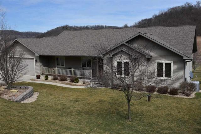 25649 Hillside Ln, Richland, WI 53581 (#1828690) :: Nicole Charles & Associates, Inc.