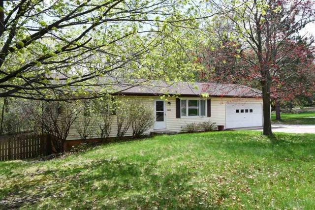 N6302 Raven Rd, Pacific, WI 53954 (#1830747) :: Nicole Charles & Associates, Inc.