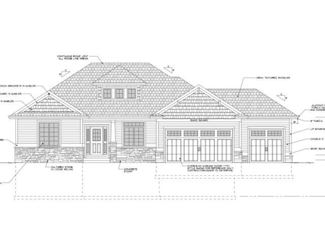 3007 Red Hawk Tr, Cottage Grove, WI 53527 (#1830847) :: Nicole Charles & Associates, Inc.