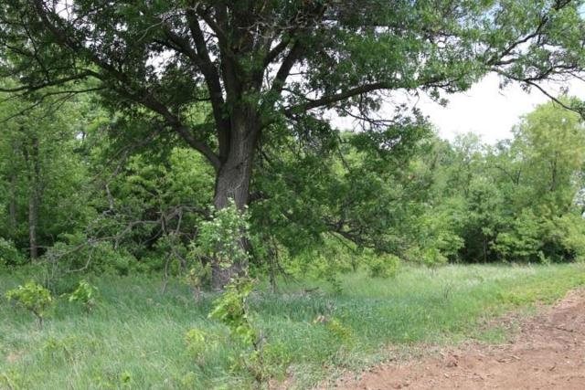 40 Ac County Road C, Colburn, WI 54943 (#1832432) :: Nicole Charles & Associates, Inc.