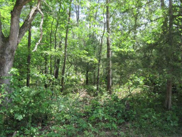 2 Ac Wilderness Tr, Quincy, WI 53934 (#1832671) :: Nicole Charles & Associates, Inc.