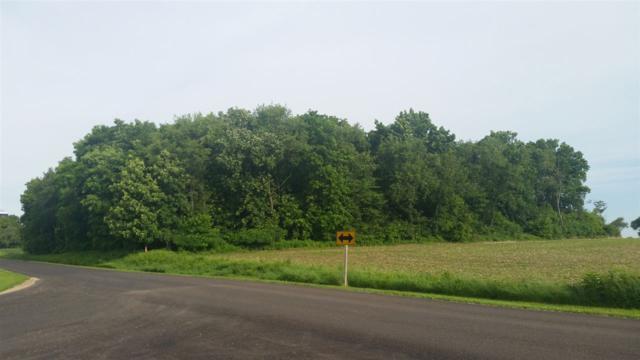 L1 Rinden Rd, Pleasant Springs, WI 53589 (#1833160) :: HomeTeam4u