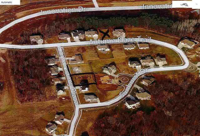6838 Conservancy Plaza, Deforest, WI 53532 (#1833406) :: Nicole Charles & Associates, Inc.