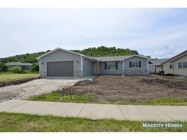 3017 Valley St, Black Earth, WI 53515 (#1833701) :: Nicole Charles & Associates, Inc.