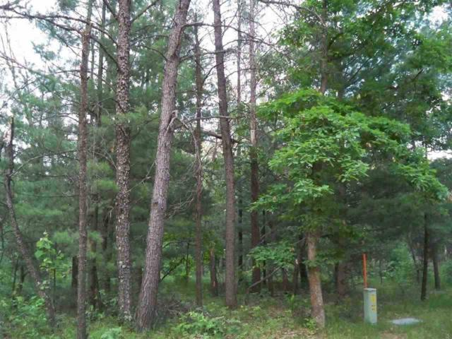 2.38 Ac Woodland Ln, Clearfield, WI 53950 (#1833757) :: HomeTeam4u
