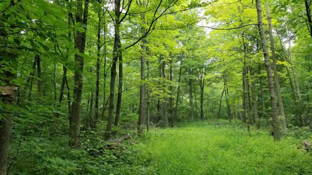 38 Ac Forest Dr, Baraboo, WI 53913 (#1834958) :: Nicole Charles & Associates, Inc.
