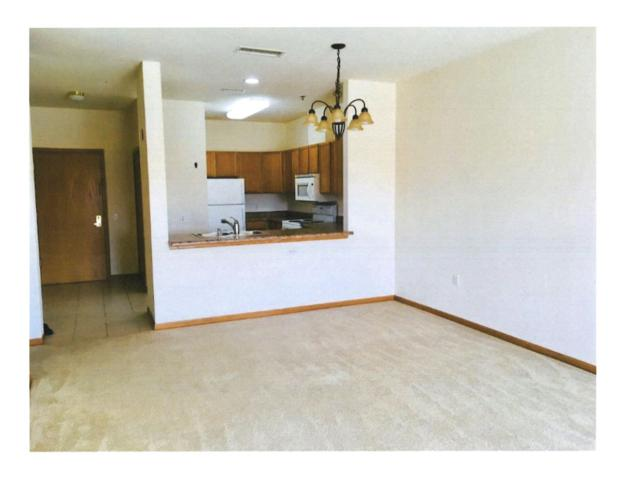 301 Harbour Town Dr, Madison, WI 53717 (#1834997) :: Nicole Charles & Associates, Inc.