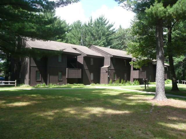 6 Pine Tr, Springville, WI 53965 (#1836289) :: Nicole Charles & Associates, Inc.