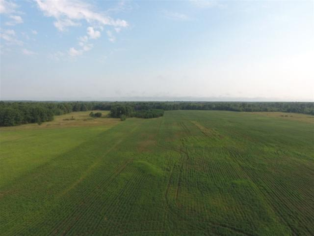 240 AC Lynn Hill Rd, Port Edwards, WI 54457 (#1838699) :: Nicole Charles & Associates, Inc.